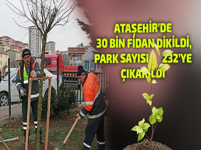 Ataşehir'e ekilen fidan sayısı 30 Bini buldu