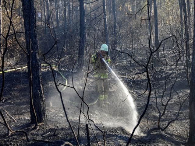 Ataşehir'in ciğerleri olan Kayışdağı'nda yangın çıktı! Yangın kontrol altına alındı