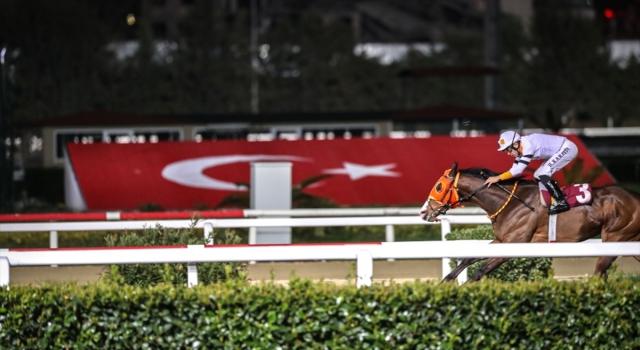 Atçılık camiasından yarışların başlatılması talebi