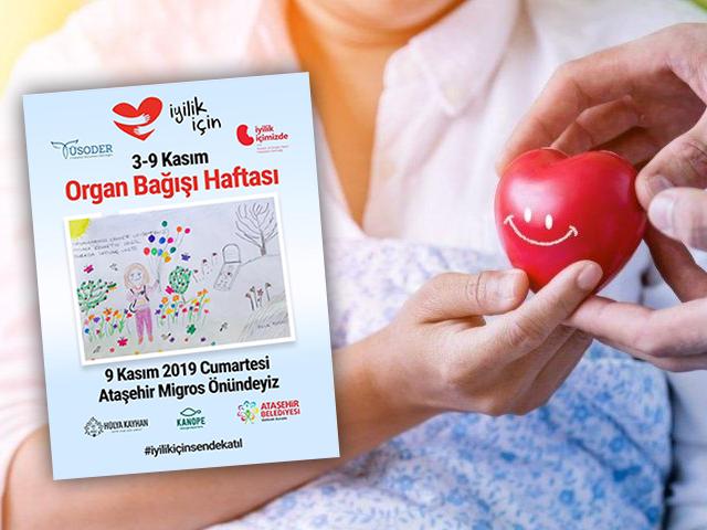 Ataşehir'de Organ Bağışı Haftası Etkinliklerle Kutlanacak