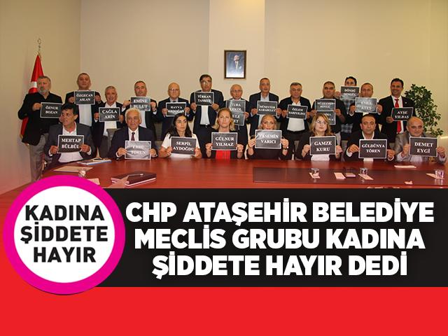 CHP Ataşehir Belediye Meclis Grubu 'Şiddete Hayır' Dedi