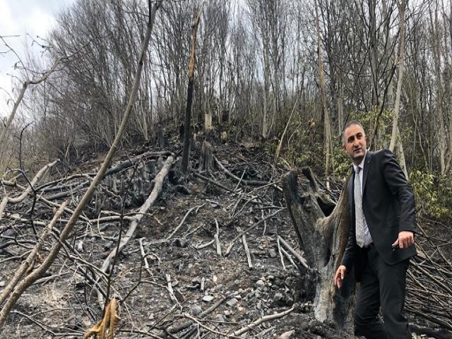 Trabzon'daki Yangınlar Kontrol Altına Alınmaya Çalışılıyor