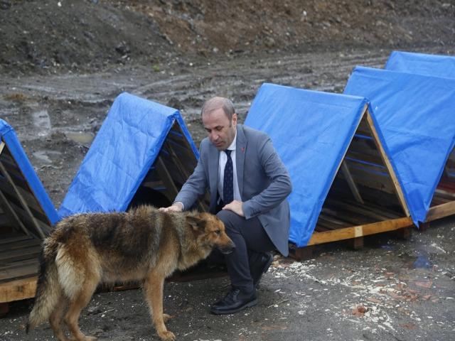Kara Kışta Sokak Hayvanlarına 400 Sıcak Yuva
