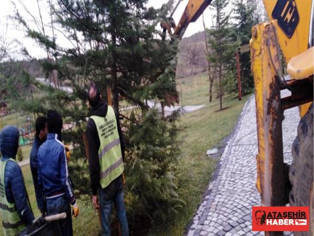 Kemerburgaz'da Fırtınanın Yaraları Sarlılıyor