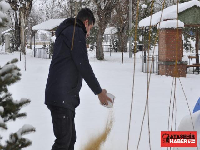 Şuhut'ta Karla Mücadele Çalışmaları Devam Ediyor