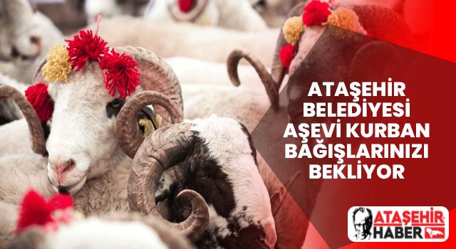 Ataşehir Belediyesi Aşevi Kurban Bağışlarınızı Bekliyor