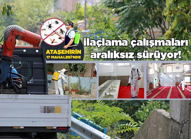 Ataşehir'de ilaçlama çalışmaları aralıksız sürüyor!