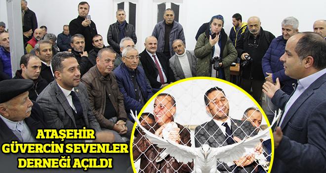 Ataşehir Güvercin Sevenler Derneği Küçükbakkalköy'de Açıldı